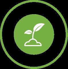 Natural fertilizer